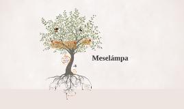 Meselámpa