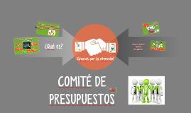 Copy of COMITÉ DE PRESUPUESTOS