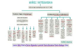 MAPA CONCEPTUAL-NIÑEZ INTERMEDIA