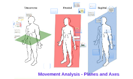 Copy of Movement Anaylsis - Planes and Axes