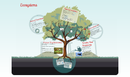 Ecosystems- SEK Internacional Guatemala