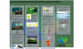 Las bases fundamentales de la vida vegetal