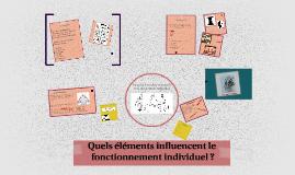 Quels éléments influencent le fonctionnement individuel ?