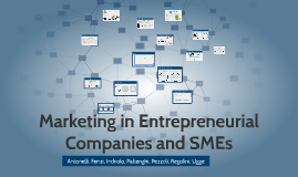Marketing in Entrepreneurial Companies and SMEs
