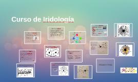 ¿Que es la Iridología?