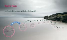 Marine Bio: Algae