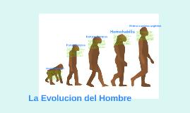 Australopithecus: