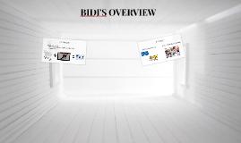 BIDI'S OVERVIEW