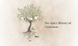 Two Types of Cinnamon