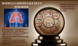 Copy of MODELLO ARTIFICIALE DI UN          POLMONE