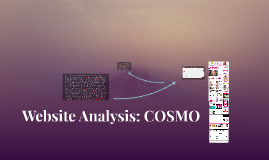 Website Analysis: COSMO