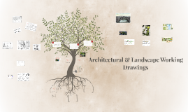 Architecture & Landscape Working Drawing