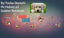 Copy of By:Tooba Qureshi               Mr.Hulsey