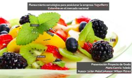 Planeamiento estratégico para posicionar la empresa YogurBerry Colombia en el mercado nacional