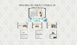 PRINCIPIOS DEL DISEÑO UNIVERSAL DE APREDIZAJES