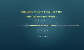 Nollamara Peer Observation Project