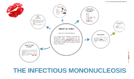 THE INFECTIOUS MONONUCLEOSIS