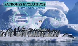 PATRONES EVOLUTIVOS
