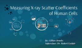 Measuring X-ray Scatter of Cells