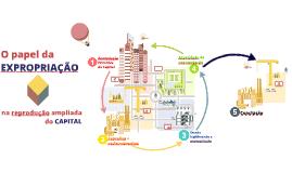 O papel dos mecanismos de expropriação na reprodução ampliada do capital