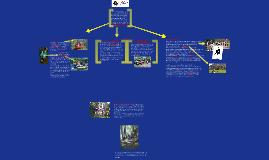 Sollicitatie combinatie functie projectleider spelkwaliteit en vrijwilligerscoördinator Scouting Academy