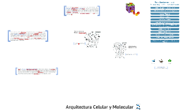 Arquitectura Celular y Molecular