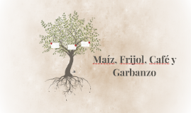 Maíz, Frijol, Café y Garbanzo
