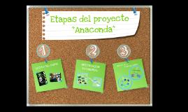 """Etapas del Proyecto """"Anaconda"""""""