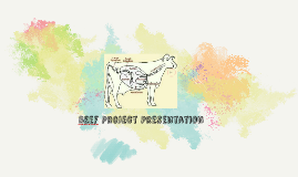 BEef Project Presentation