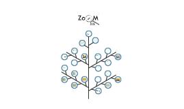 Copy of ZoomFix pristatymas