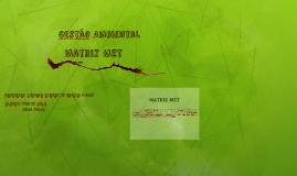 Copy of Matriz MET