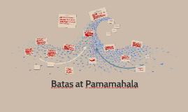 Batas at Pamamahala