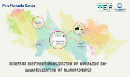 Surface biofunctionalization by covalent co-immobilization o