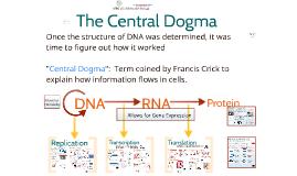 MBG202 Molecular Biology - The Central Dogma