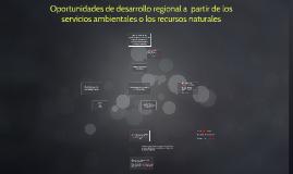 Oportunidades de desarrollo regional a  partir de los servic