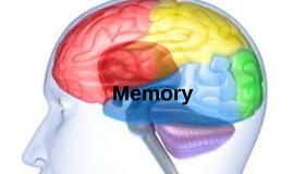 Memory Speech Media
