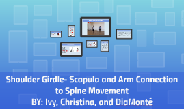 Shoulder Girdle- scapula and arm connection to spine movemen