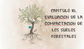 CAPITULO 10.EVALUACION DE LA COMPACTACION DE LOS SUELOS FOR
