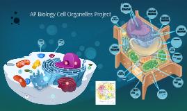 AP Biology Cell