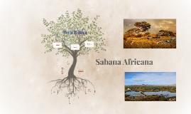 Sabana Africana
