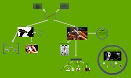 Copy of L'alcohol i el tabac