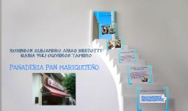 Copy of PROGRAMA DE SALUD OCUPACIONAL
