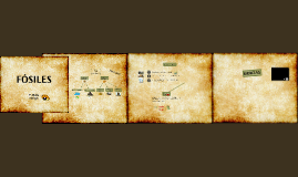 Copy of Fósiles