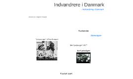 Indvandrer i Danmark
