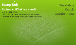 Copy of Plant & Ecology Unit: Section 2 Classifying Plants