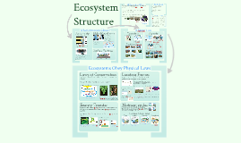 Ecology 4: Ecosystem Structure