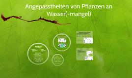 Angepasstheiten von Pflanzen an Wasser(-mangel)