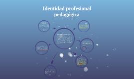 Identidad pedagógica