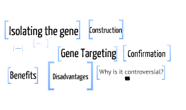 Copy of Genetic Engineering