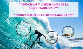 Copy of *PRINCIPIOS Y DIMENSIONES DE LA SUSTENTABILIDAD